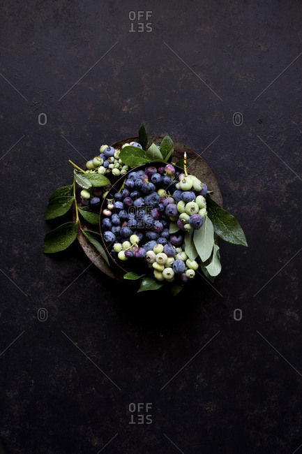Freshly picked blueberries with leaves on black surface