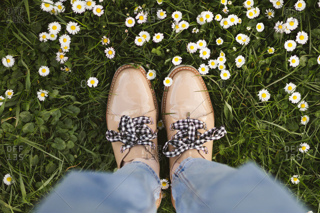 View of person wearing tan oxfords in a field of daisies