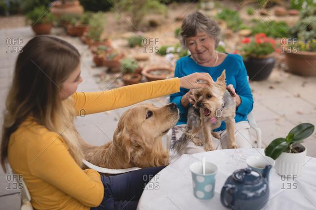 Granddaughter and grandmother caressing dog at the backyard