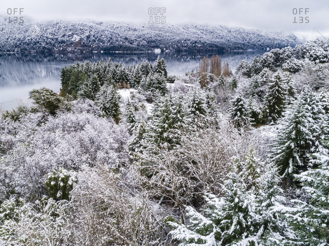 Elevated view of snow covered trees in rural Bariloche, Argentina