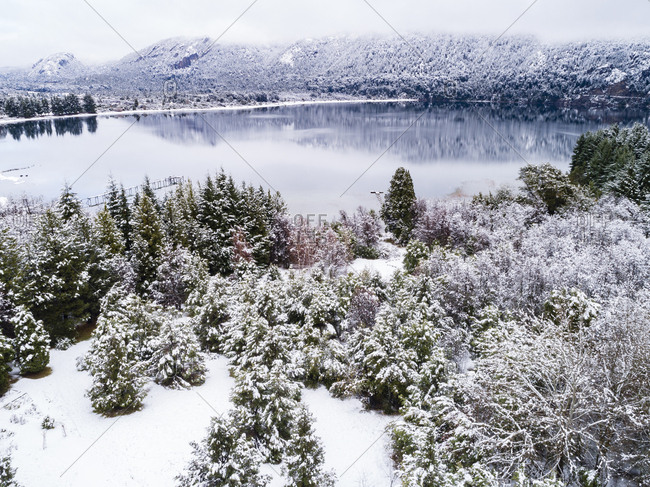 Moreno Lake and snow covered trees, Bariloche, Argentina
