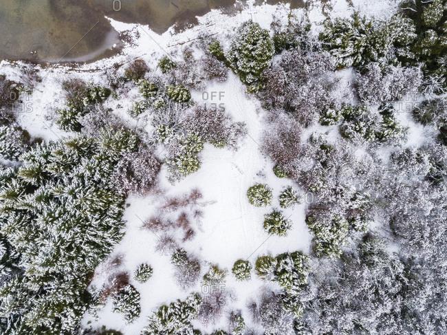 Aerial view of shoreline of Moreno Lake, Bariloche, Argentina
