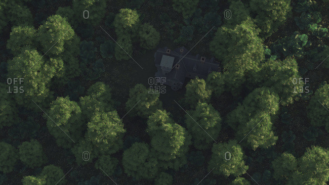 Overhead view of shady residential estate in mountain forest