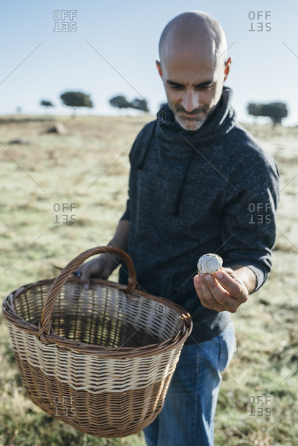 Man showing a white champignon collected in a basket