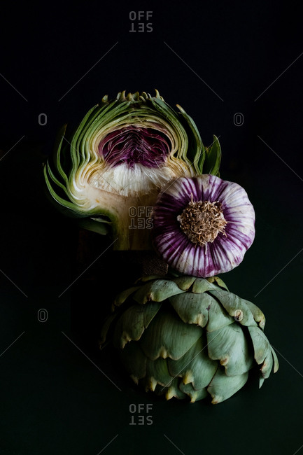 Portrait of the artichokes inside and a whole garlic Similarities in palette of colors in a black background