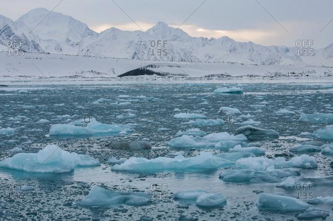 Small blocks of ice floating in water near mountainous coast