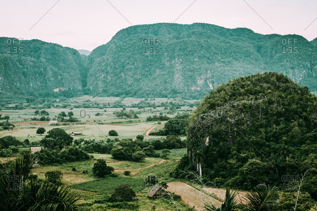 Amazing landscape of green plantations and tropical lands on background of green mountains, Cuba