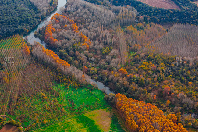 Beautiful aerial view of thin river floating between autumn forest and field
