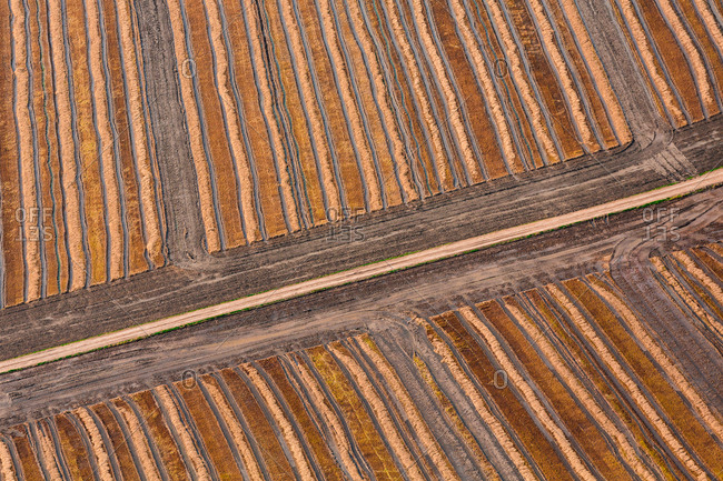 Wonderful aerial view of unusual striped fields in countryside