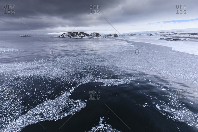 Brash ice and grease ice, Torgersen Island and glaciers of Anvers Island, Antarctic Peninsula, Antarctica, Polar Regions
