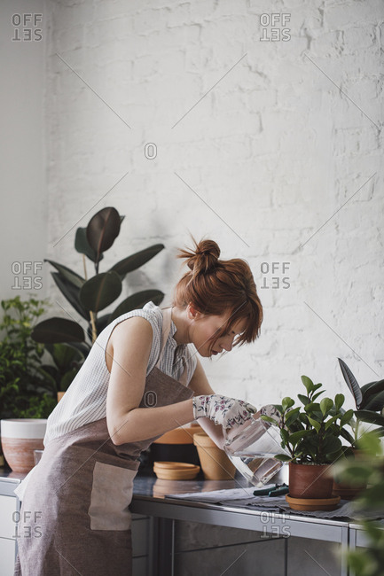 Woman florist watering plants at her workshop