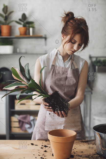 Woman florist planting at her workshop