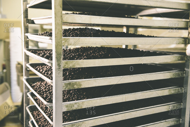 Roasted Coffee Beans On Cooling Racks In Factory