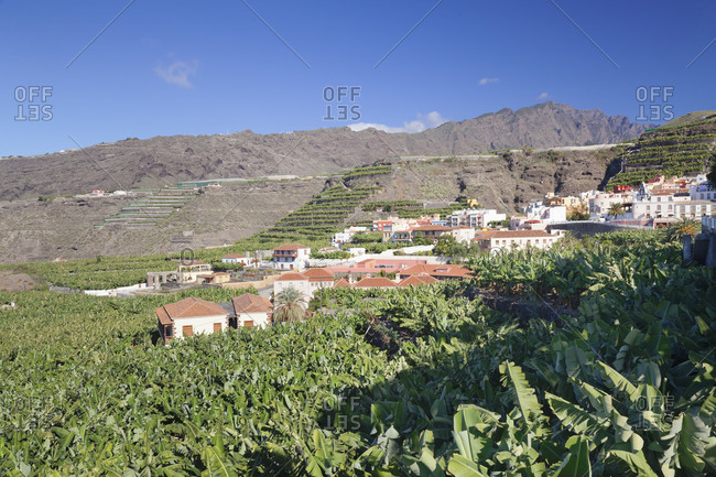 View about banana plantations to Tazacorte, island La Palma, Canary islands, Spain