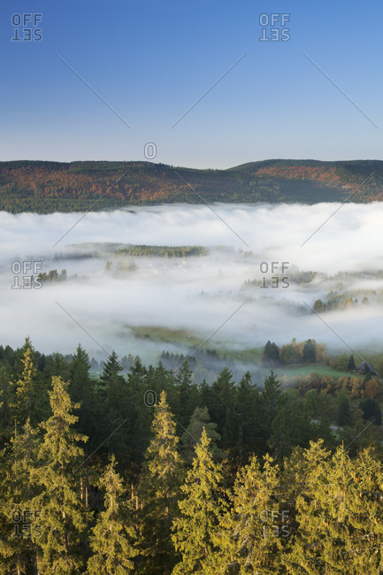 Morning fog over the Schluchsee, Black Forest, Baden-Wurttemberg, Germany