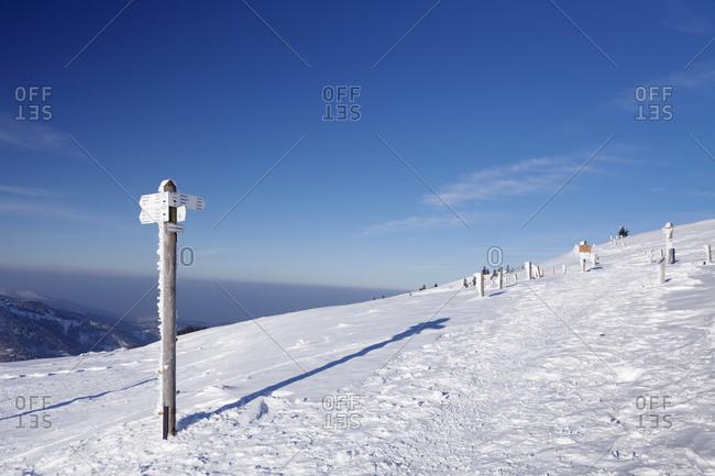 Winter scenery on the Belchen, Belchenrundweg, Black Forest, Baden-Wurttemberg, Germany