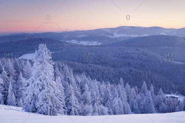 Winter scenery on the Belchen at sunrise with view to the Feldberg, Black Forest, Baden-Wurttemberg, Germany