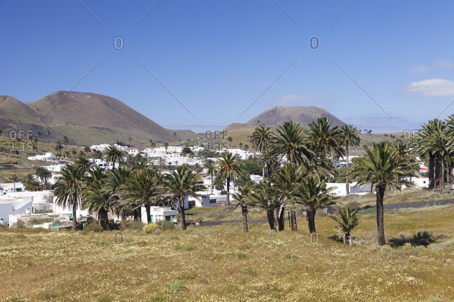 Haria, valley of thousand palms, Lanzarote, Canary islands, Spain