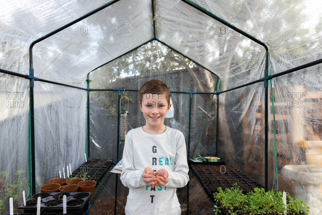 Boy holding handful of seeds to plant in a greenhouse