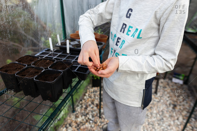 Boy planting seeds in small start containers