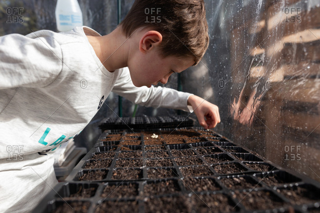 Little boy planting seeds in a greenhouse