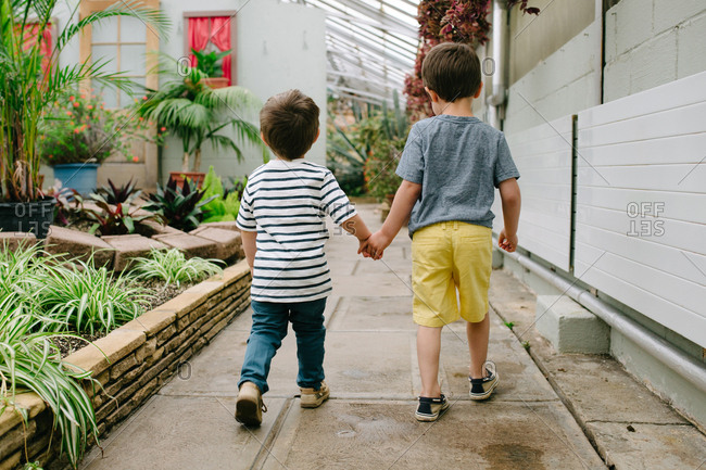Rear view of two boys walking at a botanical garden hand in hand