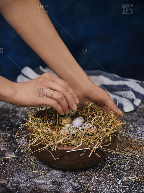 Hand picking speckled eggs from bed of straw in a bowl