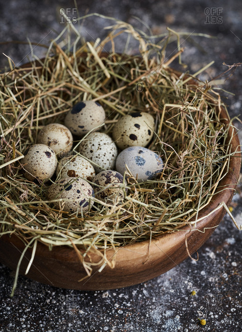 Close up of speckled eggs on bed of straw in a bowl