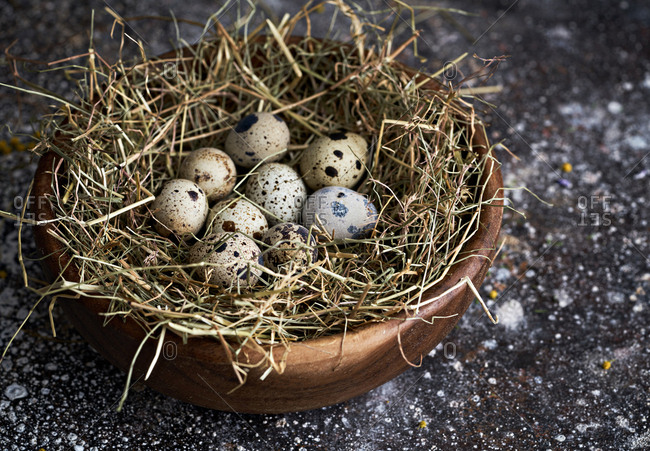 Close up of speckled eggs in a bowl on bed of straw