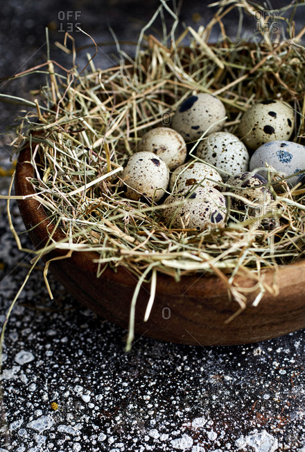 Close up of quail eggs on bed of straw in a bowl
