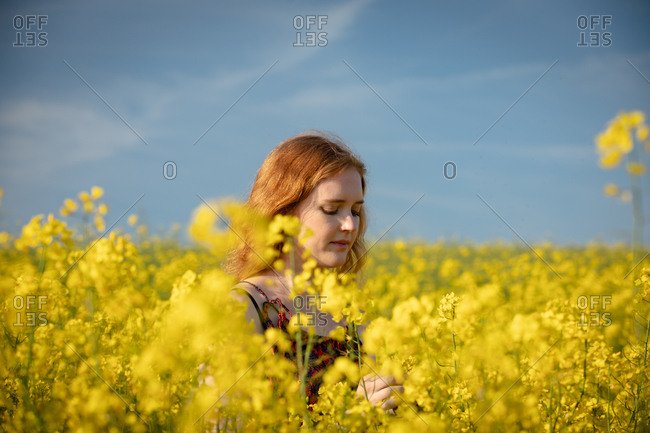 Head shot of woman touching crops in the mustard field on a sunny day