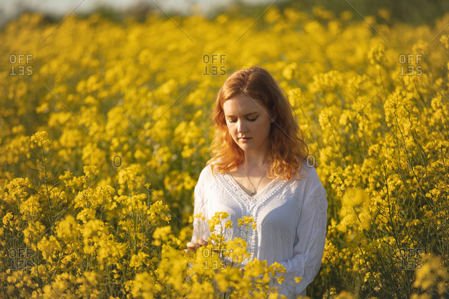 Woman touching crops in the mustard field on a sunny day