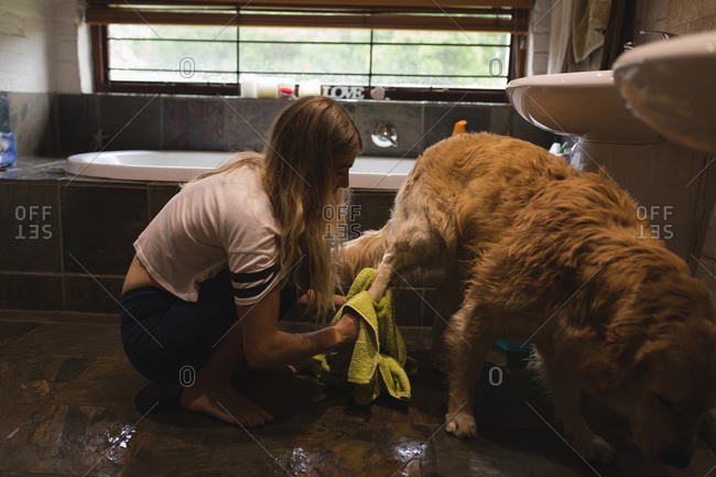 Girl cleaning a dog in bathroom at home