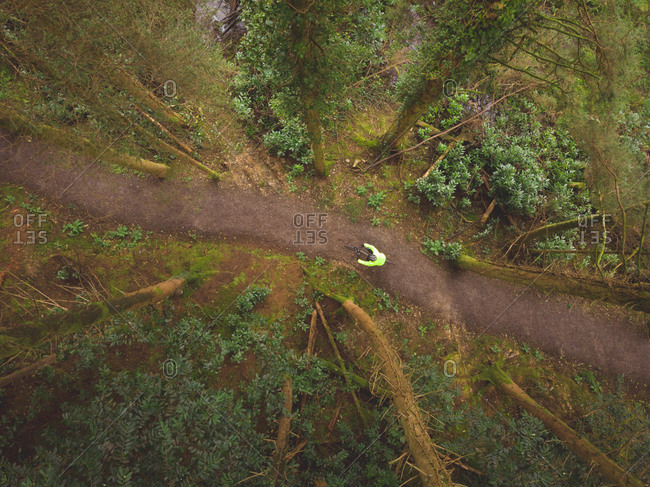 Aerial view of man cycling in the forest