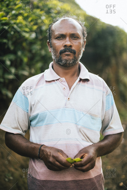 Munnar, India - February 16, 2018: Portrait of a tea plantation worker
