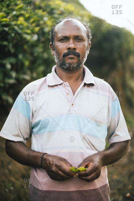 Munnar, India - February 16, 2018: Portrait of a tea plantation worker