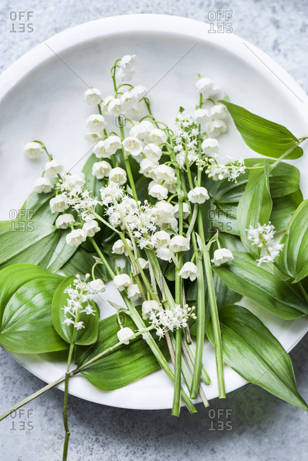 Lilies of the valley flowers with green leaves in a ceramic bowl
