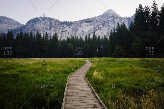 Boardwalk amidst grassy field leading towards forest and mountains against sky