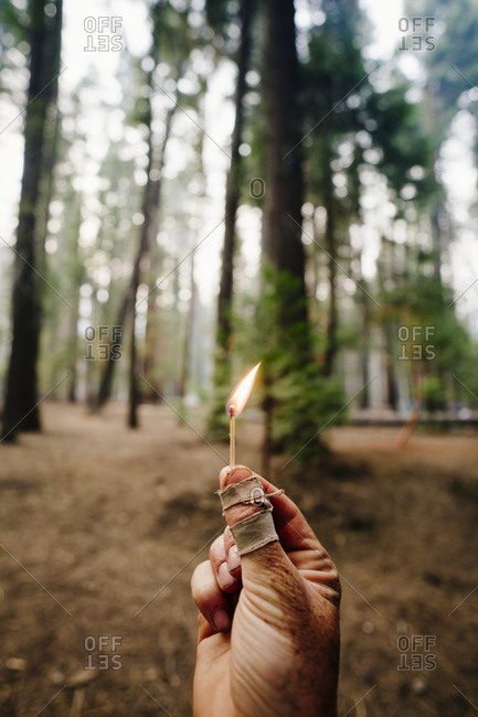 Cropped image of hand holding burning matchstick against trees in forest