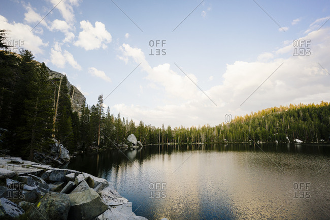 Scenic view of trees and river at Sequoia National Park against sky