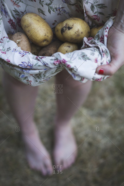 Woman holds fresh potatoes in dress
