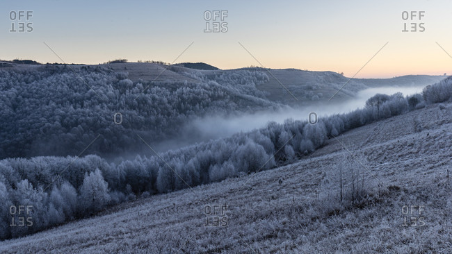 Frozen landscape in the countryside of Romania, hills and forest of conifers covered with frost with fog in the middle of the valley on a beautiful morning and sunrise in the background, Cheile Manastirii, Alba County, Romania