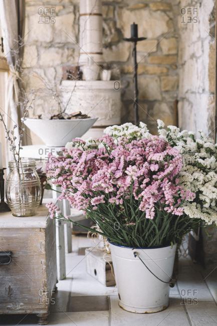 Fresh flowers in flower shop