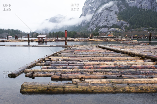 View of lots of logs floating on water in harbor of Squamish, British Columbia, Canada