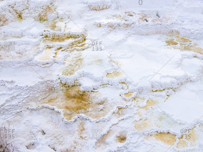 Detail of Mammoth Hot Springs, Yellowstone National Park, Wyoming, USA