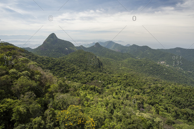 Beautiful natural scenery of forest and mountains, Tijuca Forest National Park, Rio de Janeiro, Brazil