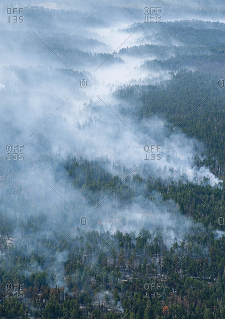 Smoke rises from a forest fire.