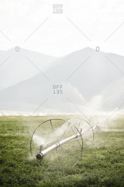 Sprinklers on an irrigation wheel, Wyoming