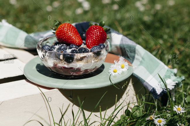 Blended smoothie bowl topped with blueberries, strawberries, and coconut served outside on wooden crate