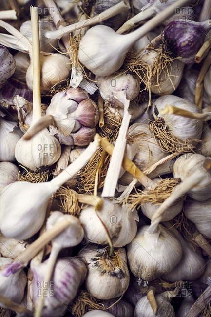 Dried cloves of garlic at farmers' market